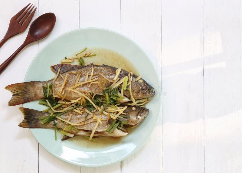 Βρασμένα στον ατμό μπλε Grouper σημείου ψάρια με τη σάλτσα σόγιας στο άσπρο πιάτο στοκ εικόνες με δικαίωμα ελεύθερης χρήσης