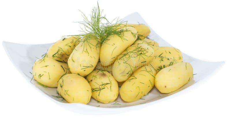 Βρασμένες πατάτες (στο λευκό) στοκ εικόνα