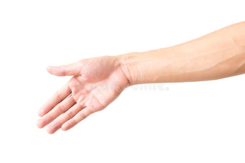 Βραχίονας ατόμων με τις φλέβες αίματος στοκ φωτογραφία με δικαίωμα ελεύθερης χρήσης