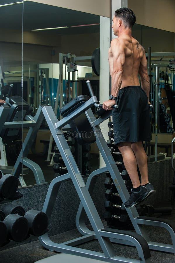 Βραχίονας workout στη λέσχη στοκ εικόνα με δικαίωμα ελεύθερης χρήσης