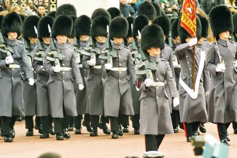 βρετανικές φρουρές βασιλικές στοκ εικόνες