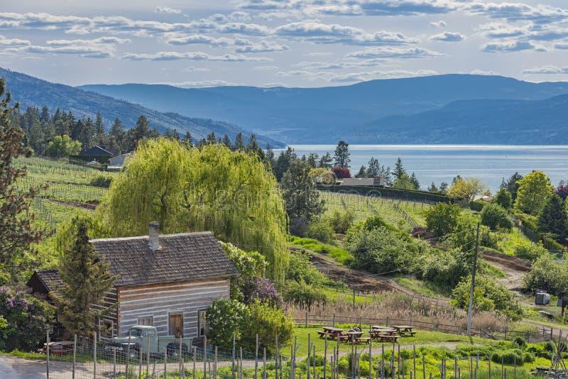 Βρετανική Κολομβία Καναδάς Kelowna λιμνών Okanagan καμπινών και οπωρώνων αγροτικών σπιτιών στοκ εικόνα