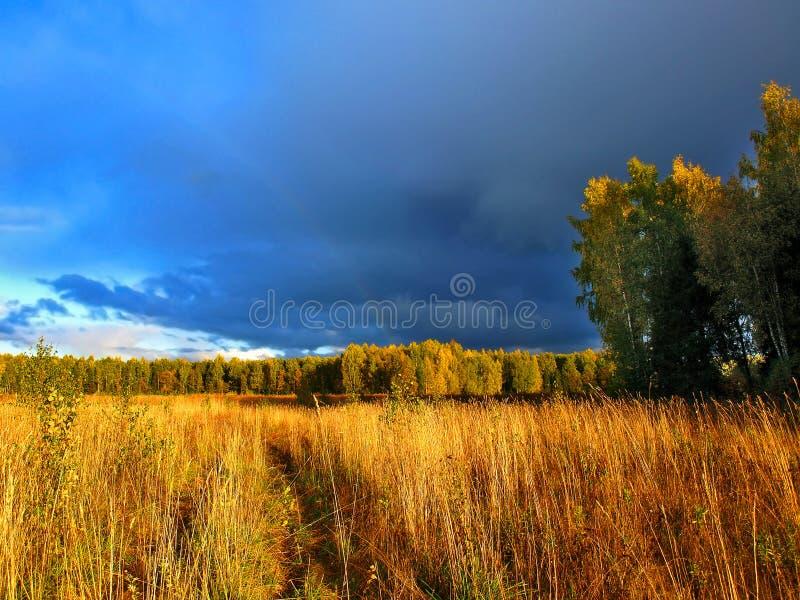 βροντή θύελλας στοκ εικόνες