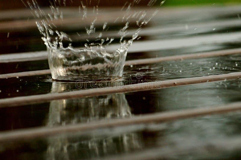 βροχή απελευθέρωσης στοκ φωτογραφία