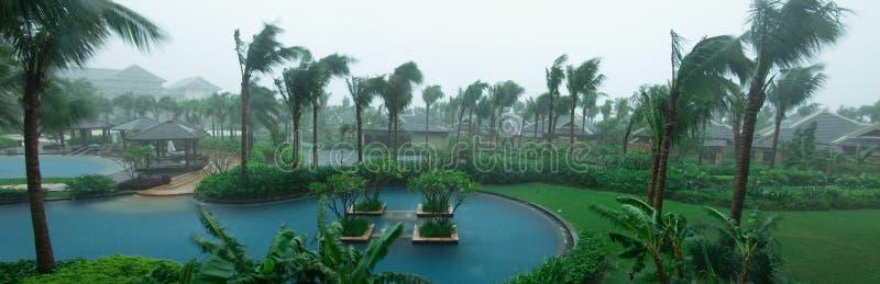 βροχή κήπων στοκ φωτογραφία με δικαίωμα ελεύθερης χρήσης