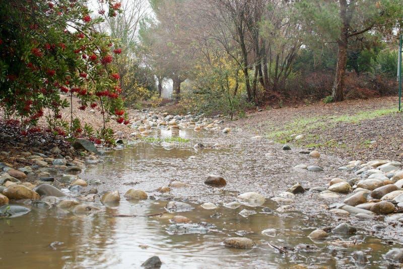 Βροχή σε κεντρική Καλιφόρνια στοκ φωτογραφίες