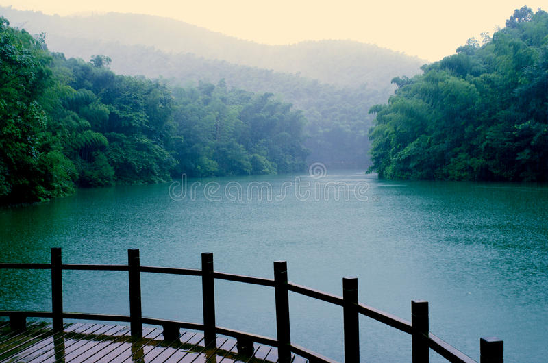 Βροχή του δάσους μπαμπού Shitang στοκ εικόνα με δικαίωμα ελεύθερης χρήσης