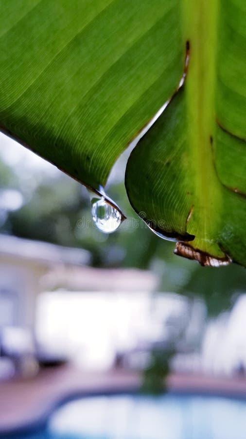 Βροχερή κατάσταση στοκ φωτογραφία με δικαίωμα ελεύθερης χρήσης