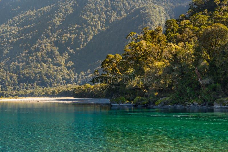 Βρυμένος διαδρομή πτώσεων του Μπίλι, που βρίσκεται στο εθνικό πάρκο επιδίωξης ΑΜ, Νέα Ζηλανδία στοκ φωτογραφία με δικαίωμα ελεύθερης χρήσης