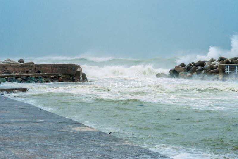 Βρόντοι Busan και Νότια Κορέα Β τυφώνα GONI στοκ εικόνες με δικαίωμα ελεύθερης χρήσης
