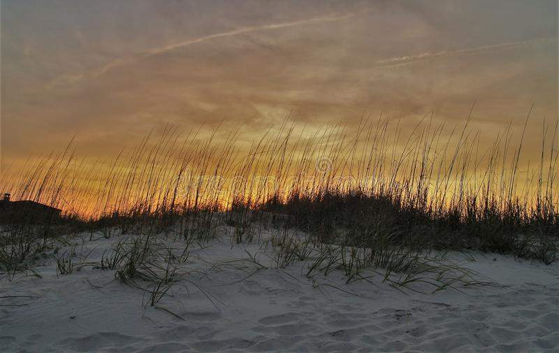 Βρώμες θάλασσας στο ηλιοβασίλεμα στοκ εικόνα