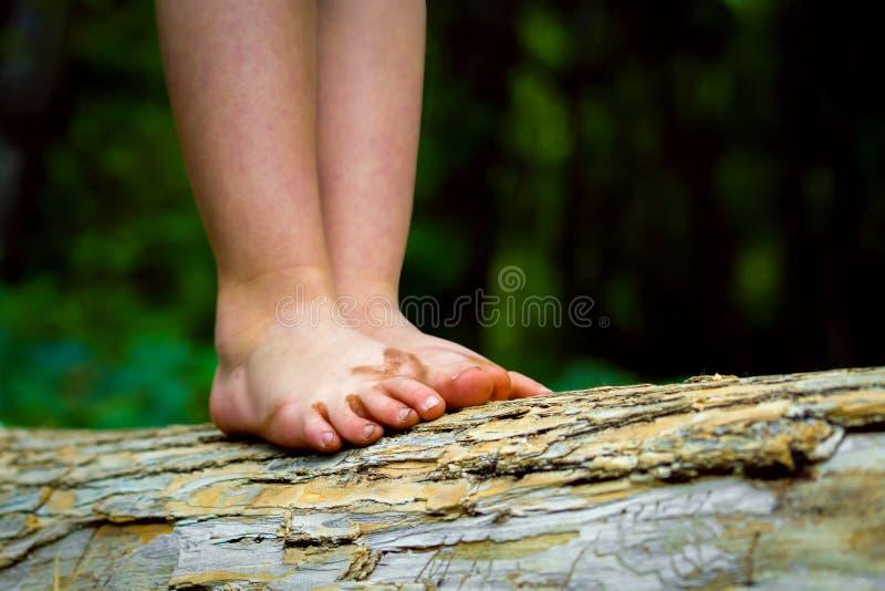 Βρώμικα πόδια που ισορροπούν σε ένα κούτσουρο στοκ φωτογραφίες