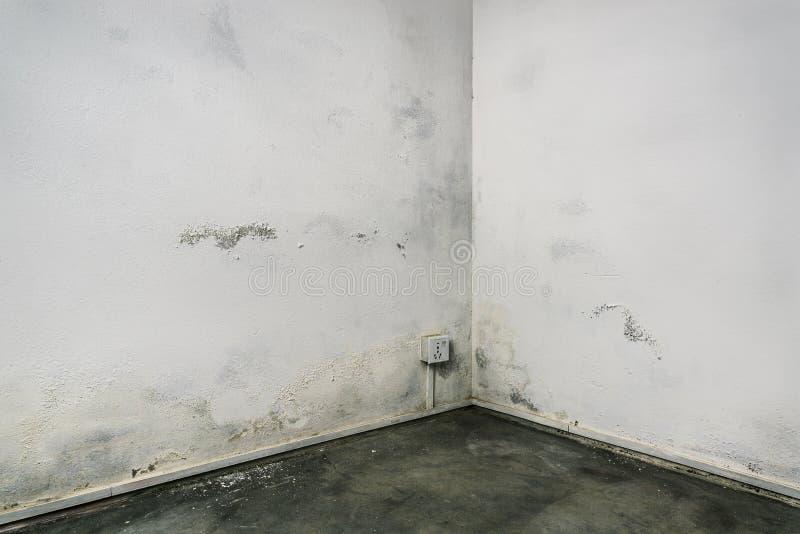 Βρώμικη γωνία δωματίων στοκ εικόνες