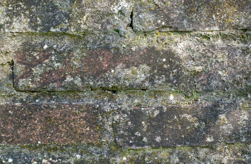βρώμικος βρώμικος παλαιός τοίχος τούβλου ανασκόπησης στοκ εικόνες με δικαίωμα ελεύθερης χρήσης