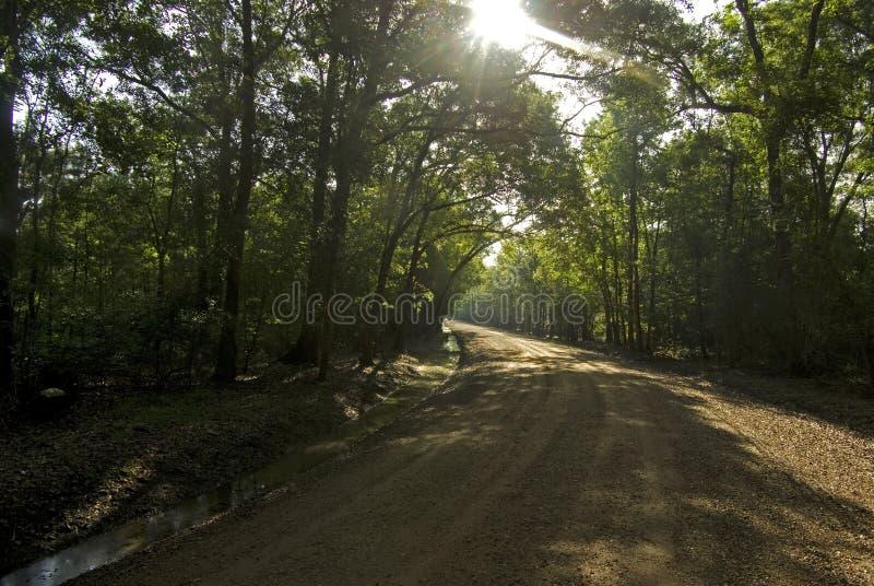 Βρώμικος δρόμος της Λουιζιάνας στοκ εικόνα με δικαίωμα ελεύθερης χρήσης