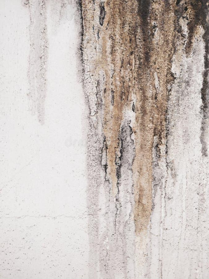 Βρώμικος λιπαρός τοίχος στοκ φωτογραφία