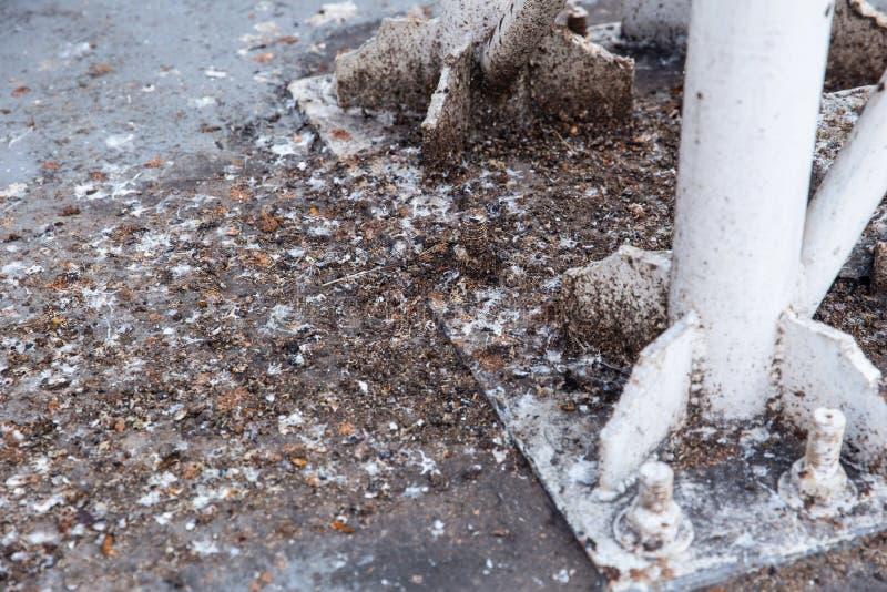 Βρώμικο επίστεγο πουλιών περιστεριών Grunge στοκ φωτογραφίες με δικαίωμα ελεύθερης χρήσης