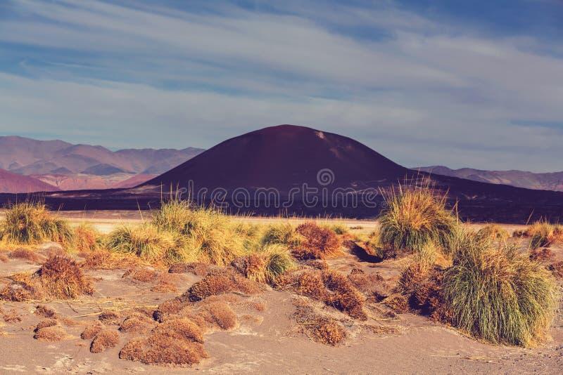 Βόρεια Αργεντινή στοκ φωτογραφίες