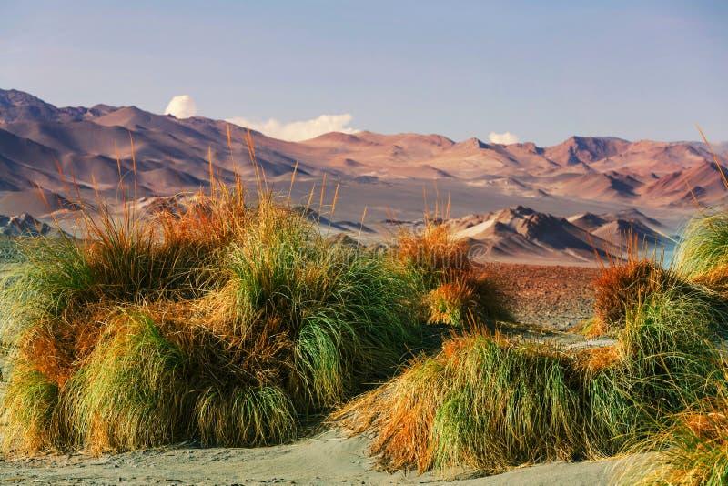Βόρεια Αργεντινή στοκ εικόνα με δικαίωμα ελεύθερης χρήσης
