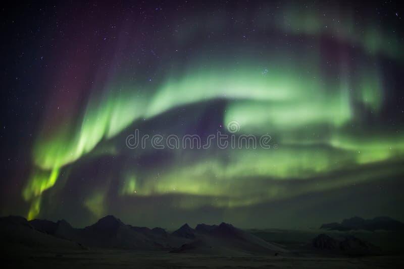 Βόρεια φω'τα στον αρκτικό ουρανό - Svalbard στοκ εικόνες με δικαίωμα ελεύθερης χρήσης