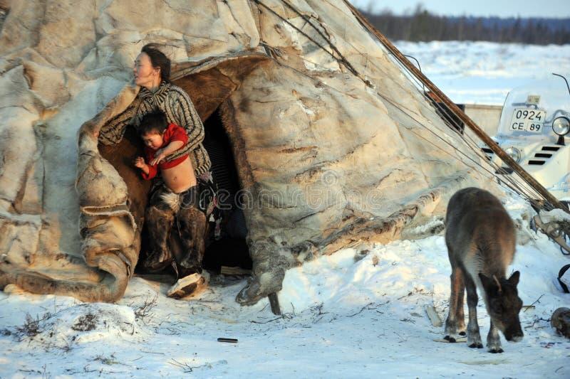 Βόρεια aboriginals Ολυμπιακών Αγώνων Ρωσία Yamal Nadym στοκ εικόνα