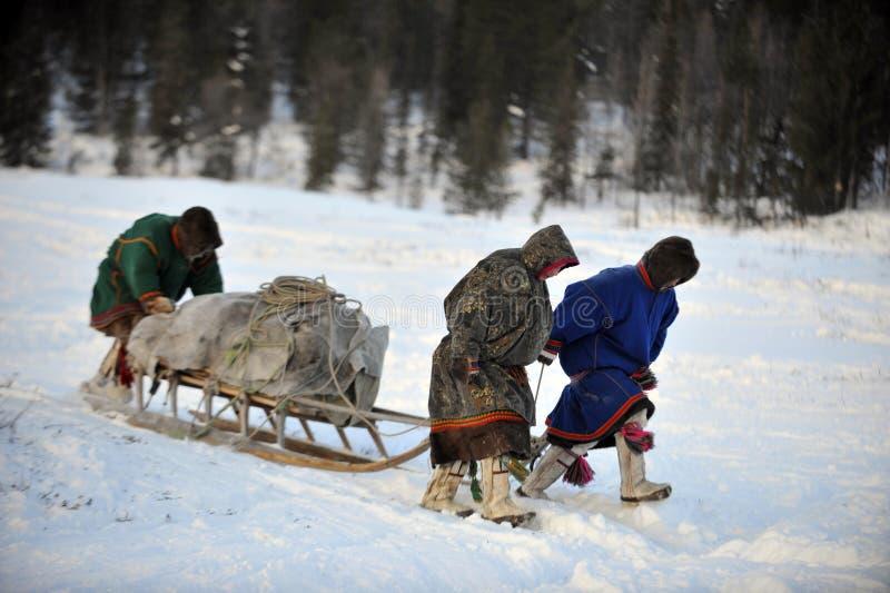 Βόρεια aboriginals Ρωσία Yamal Nadym στοκ φωτογραφίες με δικαίωμα ελεύθερης χρήσης