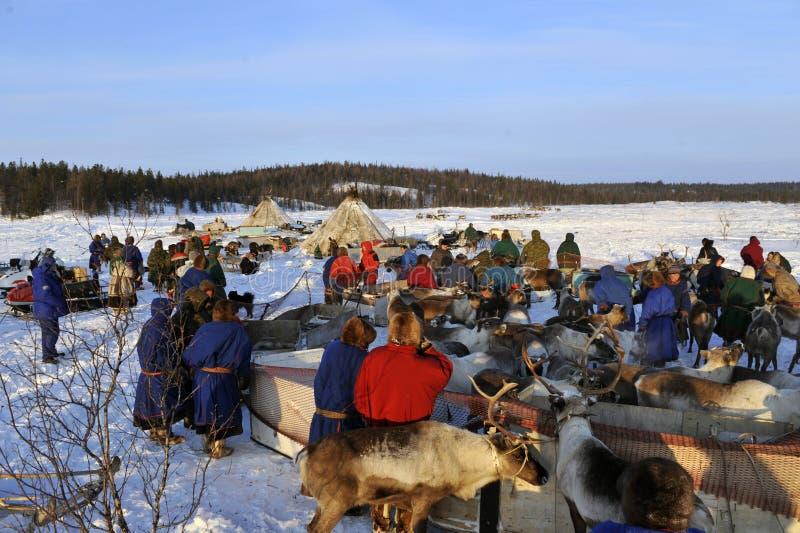 Βόρεια aboriginals Ρωσία Yamal Nadym στοκ εικόνα με δικαίωμα ελεύθερης χρήσης