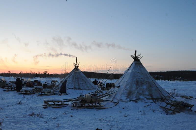 Βόρεια aboriginals Ρωσία Yamal Nadym στοκ εικόνες