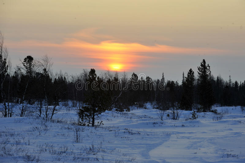 Βόρεια aboriginals Ρωσία Yamal Nadym στοκ εικόνες με δικαίωμα ελεύθερης χρήσης