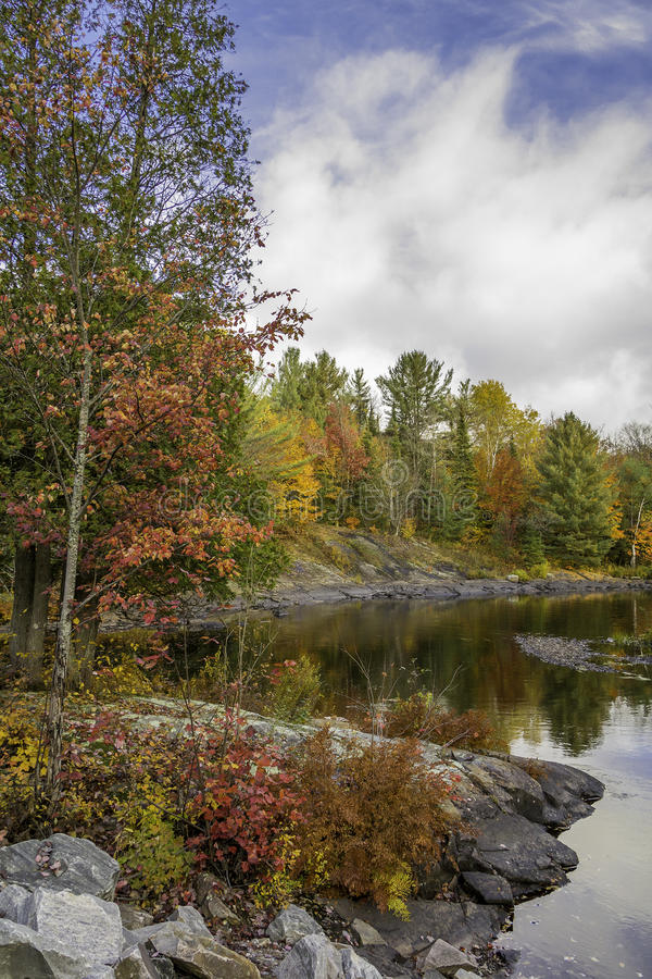 Βόρειος ποταμός το φθινόπωρο - Algonquin επαρχιακό πάρκο στοκ εικόνες με δικαίωμα ελεύθερης χρήσης