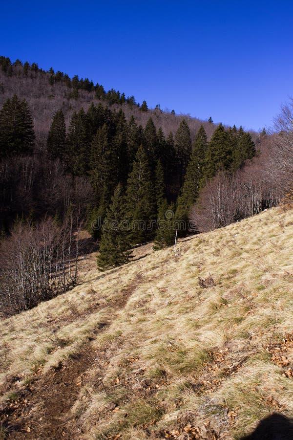 Βόρειο τοπίο Velebit στοκ εικόνες