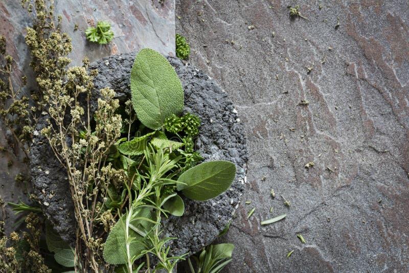 Βότανα πάνω από το φόντο σχιστόλιθου με χώρο αντιγραφής στοκ εικόνα