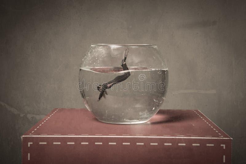 Βύθιση σε ένα κύπελλο ψαριών στοκ εικόνα με δικαίωμα ελεύθερης χρήσης