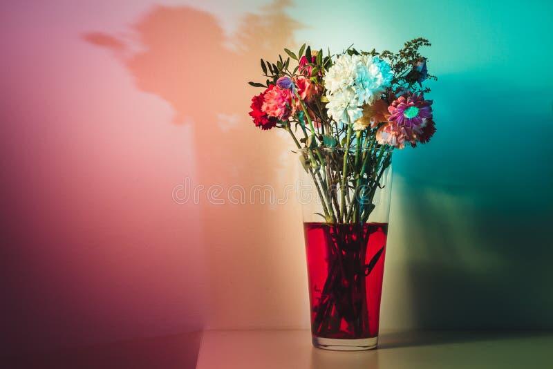 Βλαστημένα λουλούδια στο κόκκινο νερό στο χρωματισμένο φως στοκ φωτογραφία