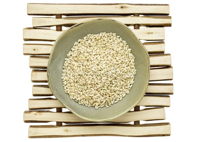 Βλαστημένο καφετί ρύζι στοκ φωτογραφία
