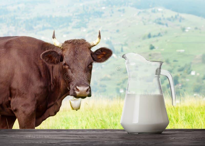 Γάλα στην κανάτα γυαλιού στον ξύλινο πίνακα με την αγελάδα στο λιβάδι στην πλάτη στοκ φωτογραφίες με δικαίωμα ελεύθερης χρήσης
