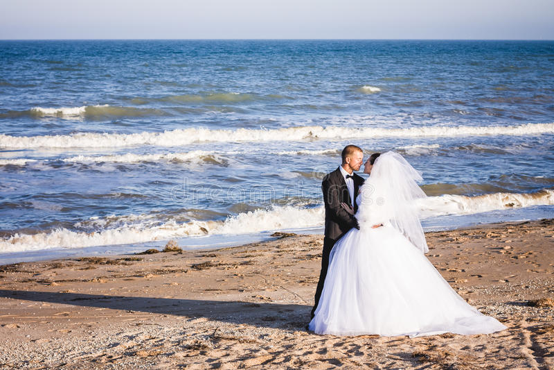 γάμος δεσμών κοσμήματος κρυστάλλου λαιμοδετών ζευγών στοκ εικόνα