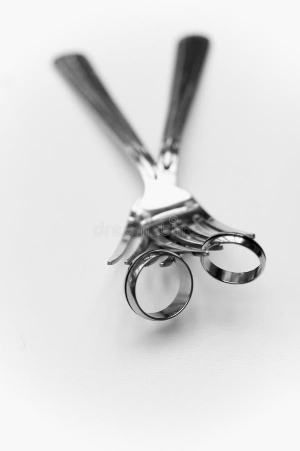 γάμος λεπτομέρειας ζωνών Στοκ φωτογραφία με δικαίωμα ελεύθερης χρήσης