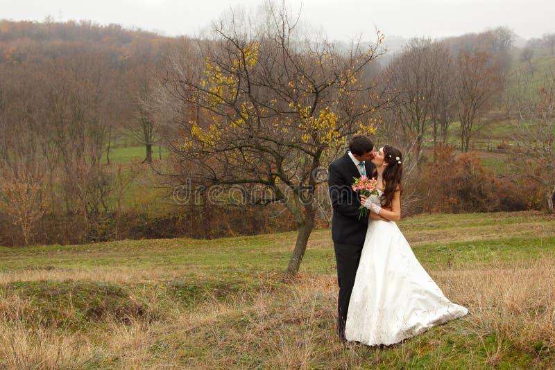 Γάμος, νέα νύφη φιλιών νεόνυμφων ερωτευμένη πέρα από τη φύση φθινοπώρου backg στοκ εικόνες