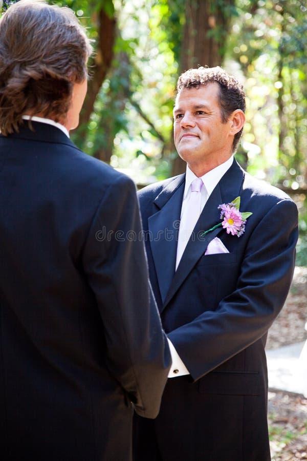 Γάμος ομοφυλοφίλων - όμορφος λατίνος νεόνυμφος στοκ εικόνες