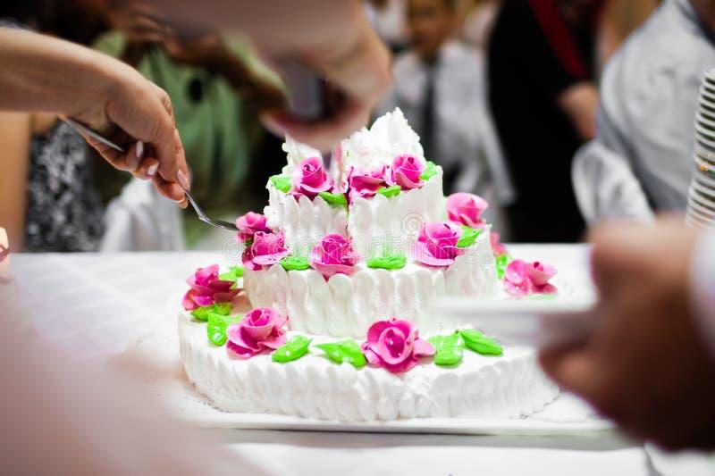 γάμος πιτών στοκ εικόνα