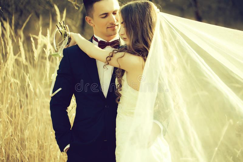 Γάμος που αγκαλιάζει το ζεύγος στοκ εικόνα