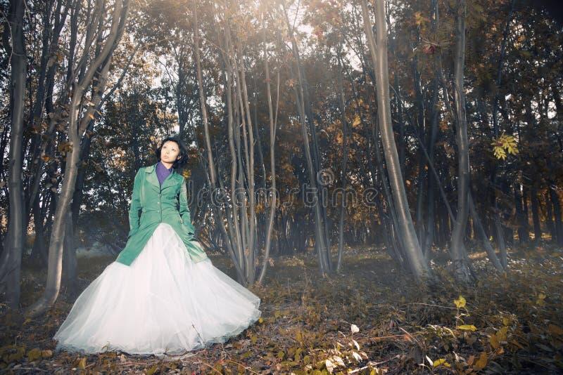 γάμος φθινοπώρου στοκ φωτογραφίες με δικαίωμα ελεύθερης χρήσης