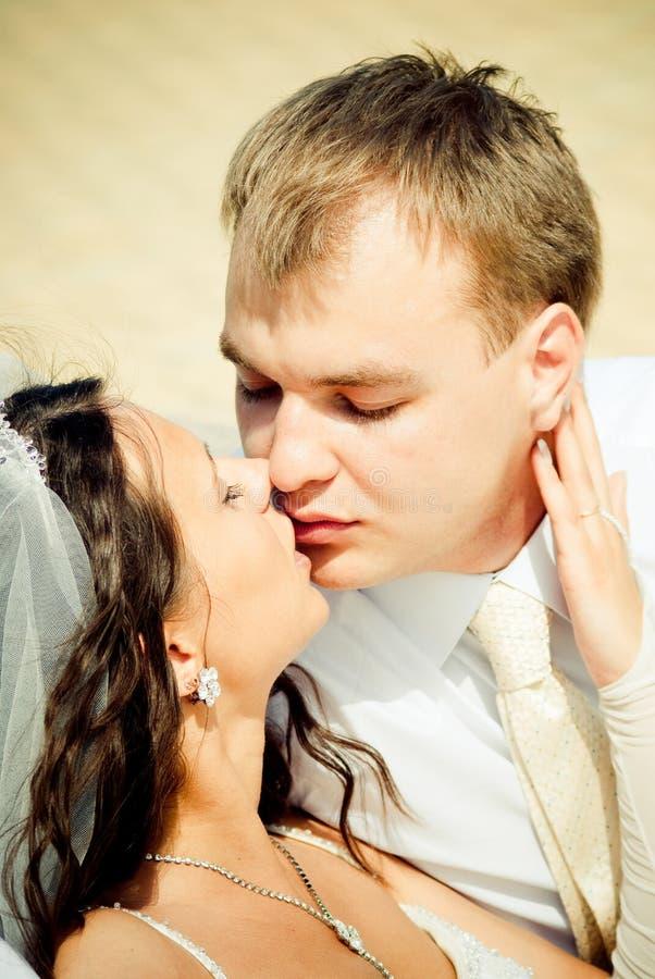 Download γάμος φιλήματος ζευγών στοκ εικόνα. εικόνα από μαύρα - 13185923