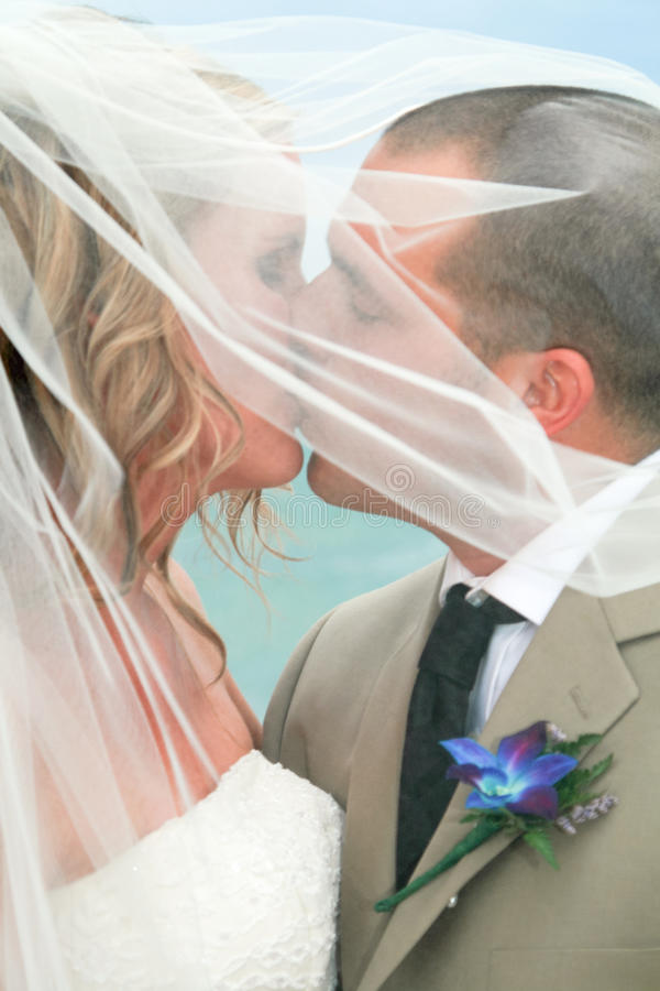 γάμος φιλιών παραλιών στοκ φωτογραφίες με δικαίωμα ελεύθερης χρήσης