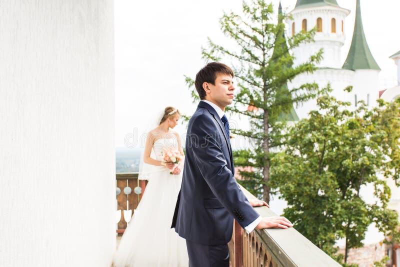 Γάμος, όμορφοι ρομαντικοί νύφη και νεόνυμφος στοκ φωτογραφίες με δικαίωμα ελεύθερης χρήσης