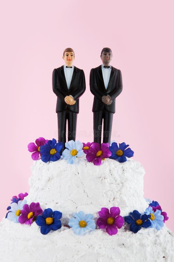 γάμος homo κέικ στοκ φωτογραφία με δικαίωμα ελεύθερης χρήσης