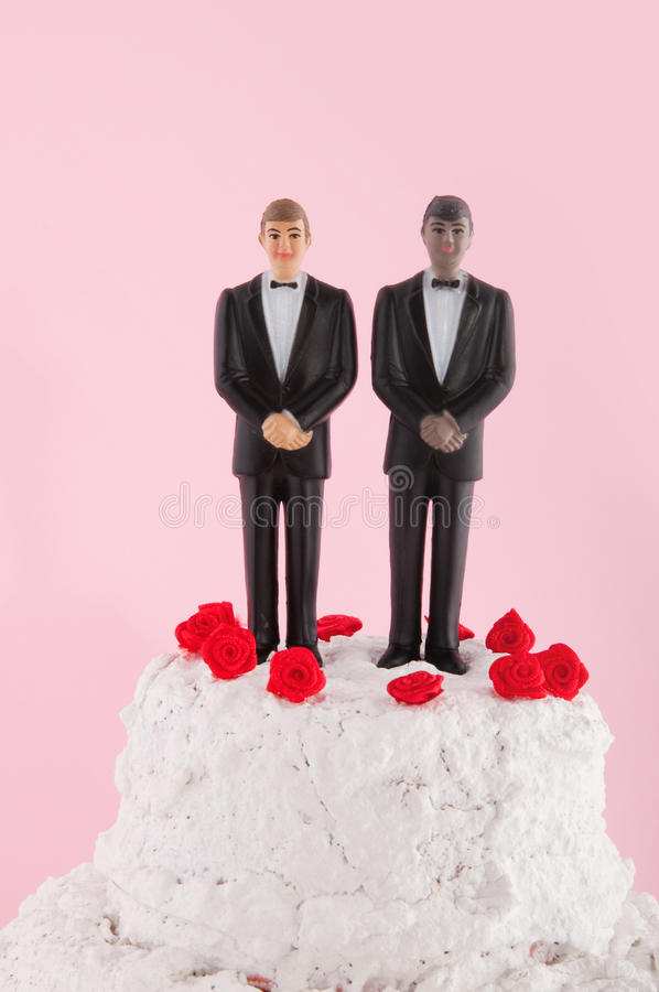 γάμος homo κέικ στοκ φωτογραφίες με δικαίωμα ελεύθερης χρήσης