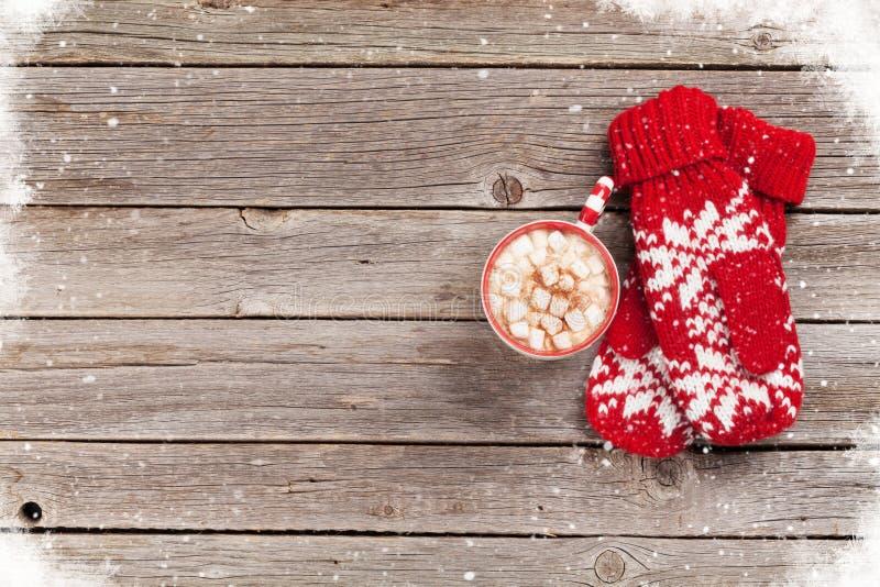 Γάντια και καυτή σοκολάτα με marshmallow στοκ εικόνα