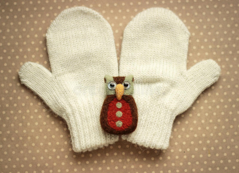 γάντια και κουκουβάγια παιχνιδιών στοκ φωτογραφίες με δικαίωμα ελεύθερης χρήσης